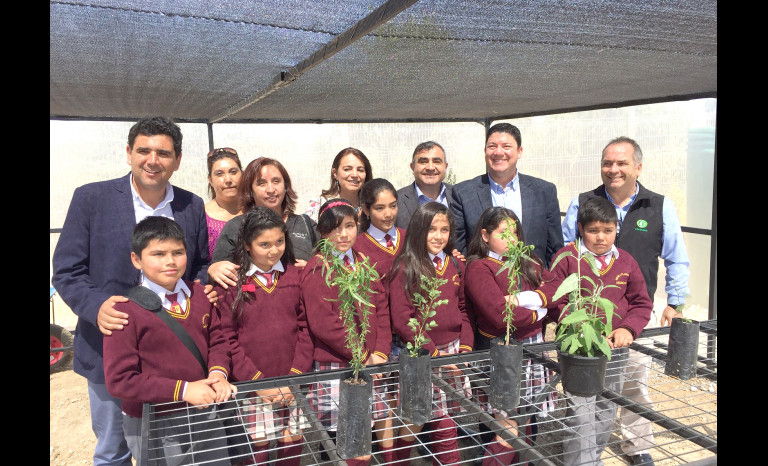 Flora Nativa, colegio Teresita de Los Andes, Punitaqui