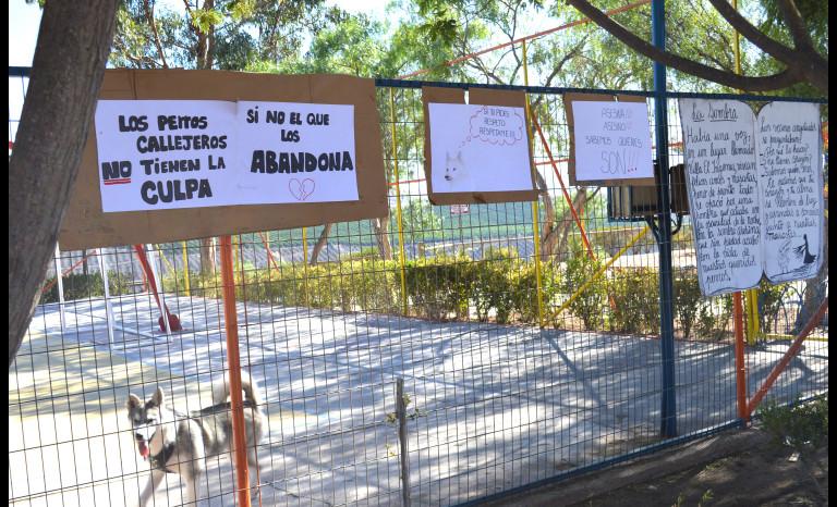 perros, Villa El Ingenio