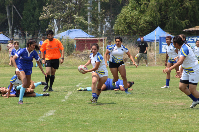 Goliath Profesores rugby