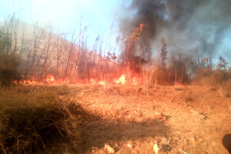 Incendio, Carachilla, La Chimba
