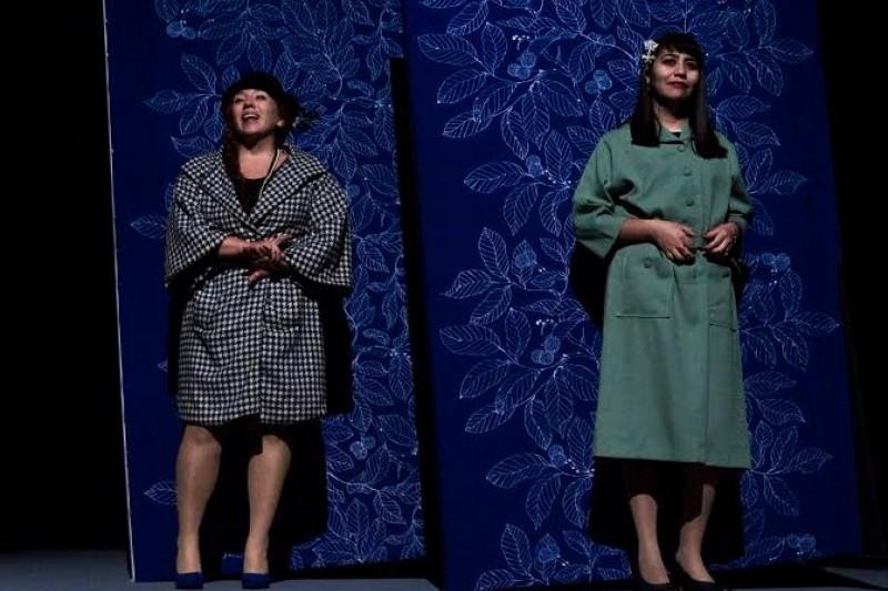 Bombal llega al Teatro Municipal de Ovalle