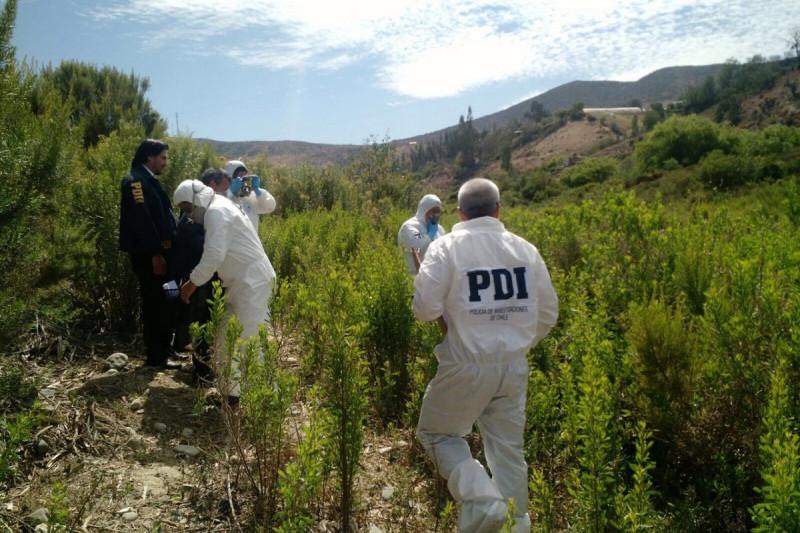 Encuentran cadáver en la ribera del río Limarí
