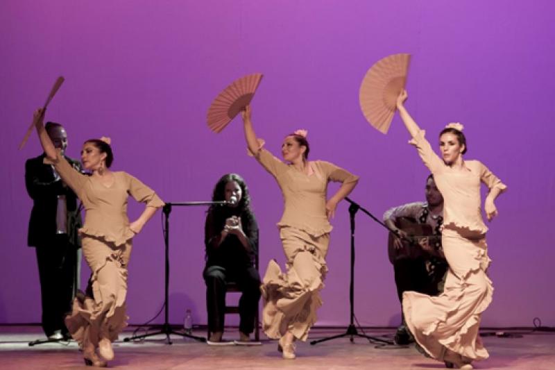 El flamenco llega al Limarí